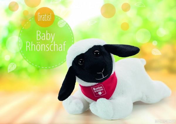 Baby Rhönschaf